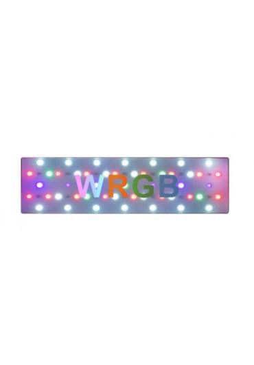 AQUA WEEK CITY J300 WRGB LED világítás