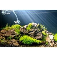 45 literes fali akvárium