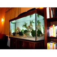 600 literes koponyakő dekorációs akvárium