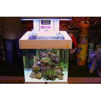 Aqua Line tengeri akvárium