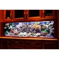 Korallos tengeri akvárium 150 literes