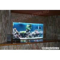 Falba süllyesztett tengeri akvárium