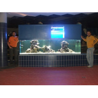Hajdúszoboszlói Hungarospa Aquaticum 3000 literes tengeri akvárium