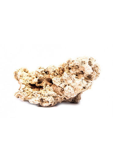 Koponya kövek