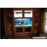 Gipszkartonnal burkolt tengeri akvárium