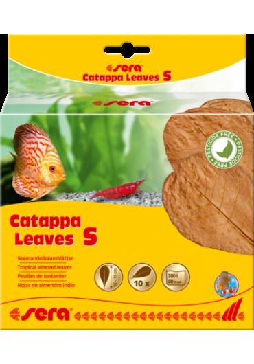 Sera Catappa Leaves - Catappa levél