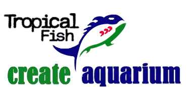 Tropicalfish Debrecen